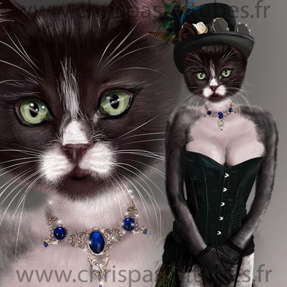 Sext cat